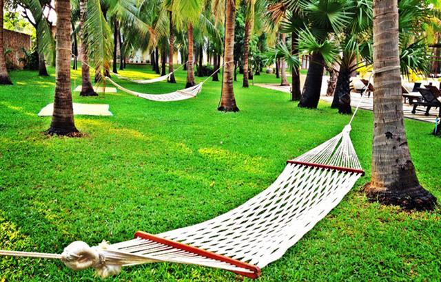 07-exterior-tropical-coconut-garden
